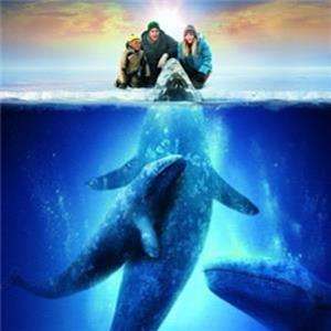 电影主题:关注濒临灭绝的动物