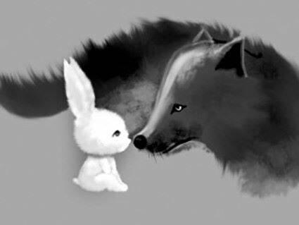 《浅谈兔子是怎样吃掉狼的》