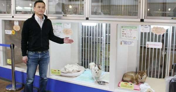 这家宠物店橱窗里的毛小孩「全部都不卖」,好奇问了原因后大家都被
